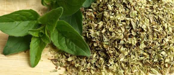 herbal-medicine_03